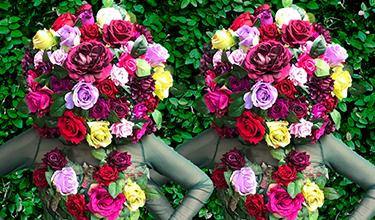 Femmes des Fleurs